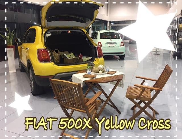 500X Yellow Cross