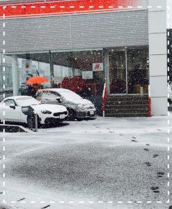 2016.11.24 雪
